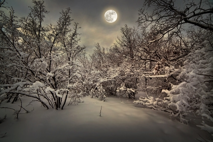 full moon and frost